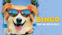 Bingo_-_Kuck_mal_wer_da_bellt_wide